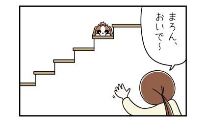 おいで~、階段の上にいる犬を下から呼ぶ飼い主