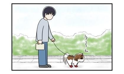 犬の散歩中。犬がうんこをしているのを見守る夫