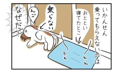 いかんせんクールマットに乗ってもらえないのはなぜだ?あいかわらず床で寝る犬