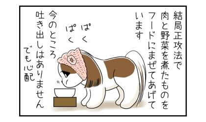結局正攻法で肉と野菜を煮たものをドッグフードに混ぜて犬にあげています。今のところ吐き出しはありません(でも心配)