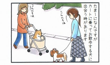 カートに乗った犬-1