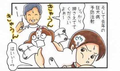 狂犬病予防注射のお知らせ-3