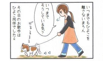 ひよことお散歩-4