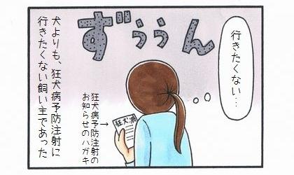 狂犬病予防注射のお知らせ-4