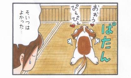 敷物1番乗り -竹シーツ編--4