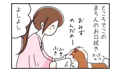 ところでこの犬のお口拭き。水を飲んだ犬の口をタオルで拭いてあげる飼い主