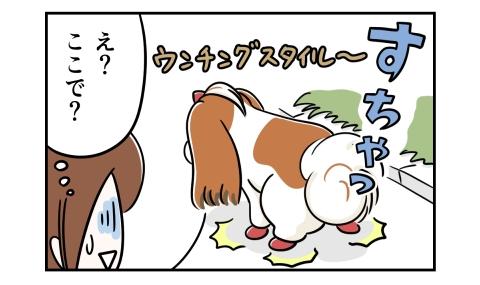 坂道でうんこをしようとする犬。え?ここで?
