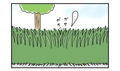 雑草の中を突き進んでいく犬