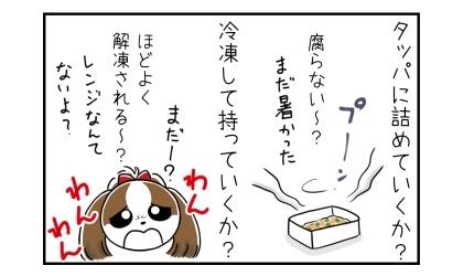犬の手作りご飯をタッパに詰めていくか?腐らない?(まだ暑かった)冷凍して持ってくか?ほどよく解凍される?レンジなんてないよ?
