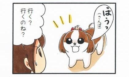 犬用レインコート -2日目前半--2