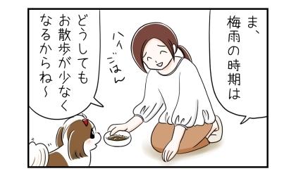 ま、梅雨の時期はどうしてもお散歩が少なくなるからね~、と犬にご飯をあげる