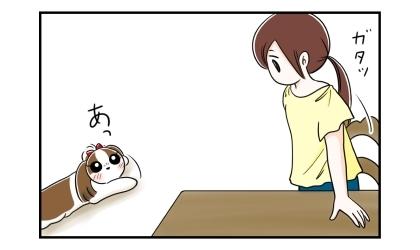 席を立つ飼い主。それを見た犬はご飯の時間かと勘違いする