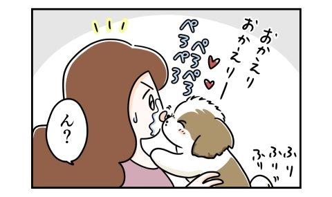 おかえりのキスをする犬