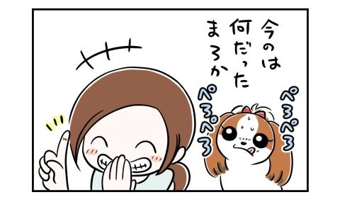 今のは何だったのか?舌をぺろぺろする犬。それを見て笑う私