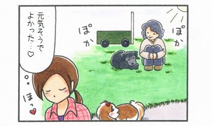 もう一匹のカートに乗った犬 ~久しぶりの再会~-4