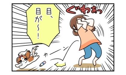 顔(左頬)に塗った液体ムヒが目に染みた飼い主、目、目が~!驚いて逃げ出す犬