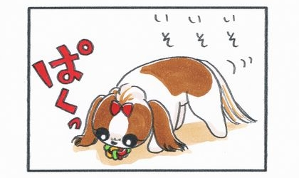 犬はいそいそとマカロニラバーボールを咥えて