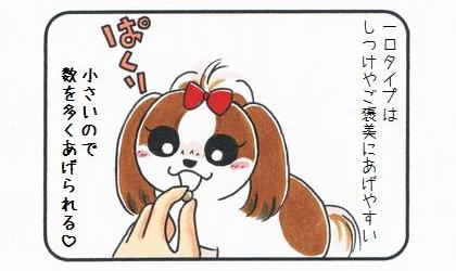 一口タイプの犬おやつは、しつけやご褒美にあげやすい。小さいので数を多くあげられる