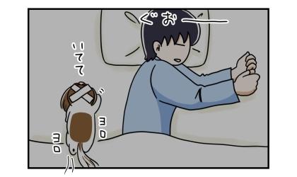 寝返りを打った夫の肘鉄を頭に食らった犬、反対側に回って寝ようとするも