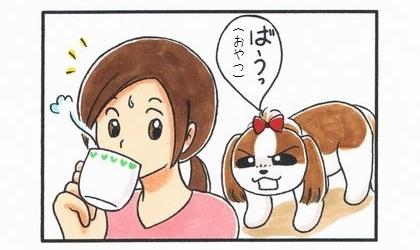 使い分け-3