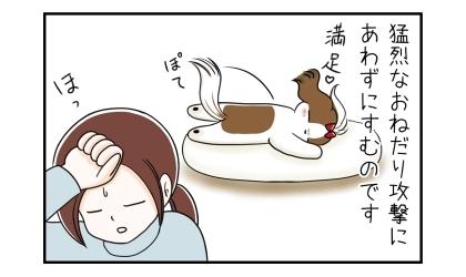 犬の猛烈なおねだり攻撃にあわないですむのです。満足して寝る