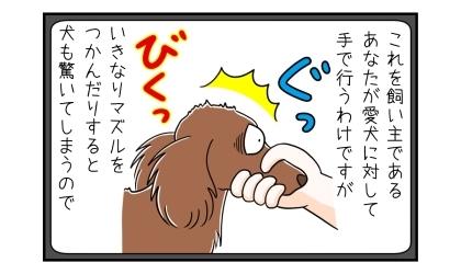 これを飼い主であるあなたが愛犬に対して手で行うわけですが、いきなりマズルをつかんだりすると犬も驚いてしまうので