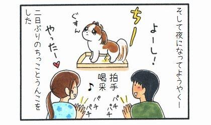 お散歩ボイコット-4