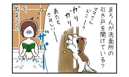 犬が洗面所の引き戸を開けている?急いでお風呂から出よう!