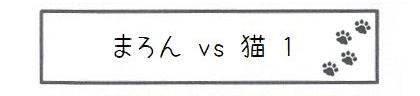 まろん vs 猫 1-0
