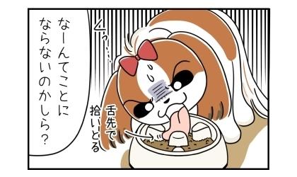 鼻ペチャの犬は舌先でドッグフードを拾いとる、なーんてことにならないのかしら?