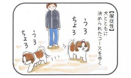トイプードルに続け☆かわいすぎる警察犬-2