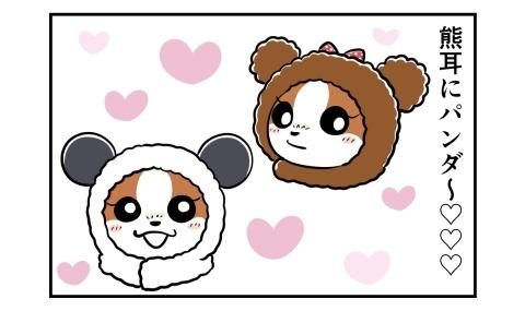 熊耳にパンダの被り物を発見。被った愛犬を想像する