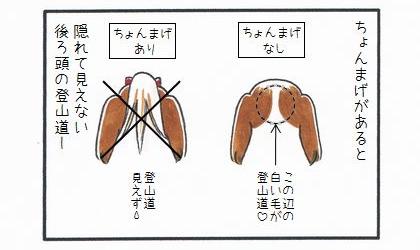 後ろ頭に萌え…たい!! 1-1