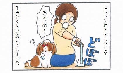 ノルバサンオチックをコットンに取ろうとして、千円分くらい流してしまった。耳掃除を逃れてほっとする犬
