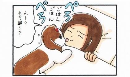 あてにならない目覚まし犬-1