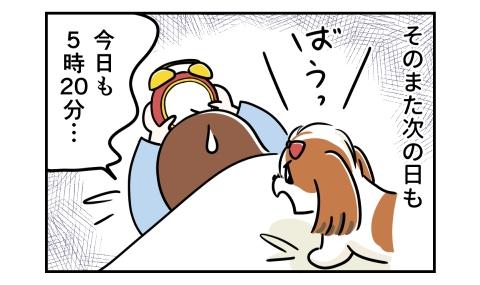 またその次の日も犬に起こされる。今日も5時20分…
