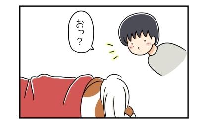 赤い毛布をかけて寝ている犬を見て、夫はひらめいた