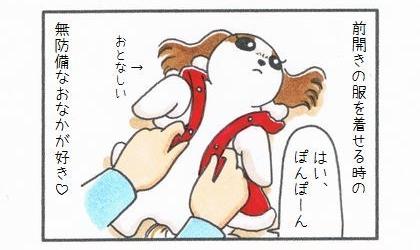 犬服を着せる愉しみ-2