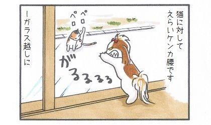 まろん vs 猫 2-4