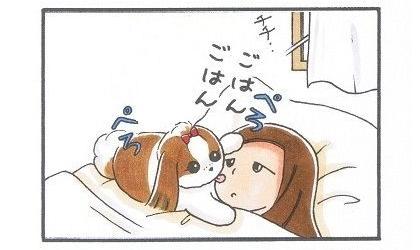 目覚まし犬-3