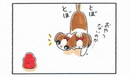 おやつないのか…、犬がとぼとぼと歩く。床に置いてあるコングワブラーを見つける