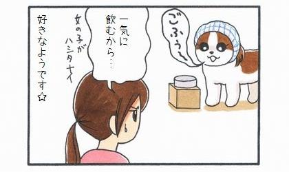 初めての犬用ミルク-4