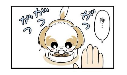 初めての「待て」e 4コマ犬漫画 ぷりんちゃんねる