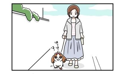 犬と散歩中。ご機嫌な犬