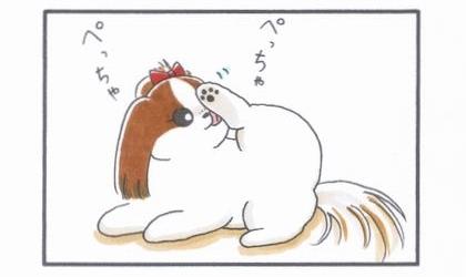 足を舐める犬-1