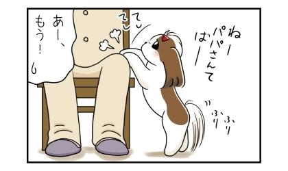 犬がしっぽを振りながらパパにおねだり、椅子に座ったパパの足を手でたたいてちょうだい。あー、もう!