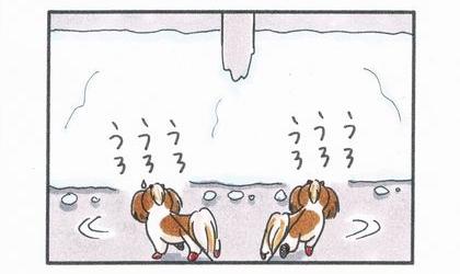 雪かきされた道-3