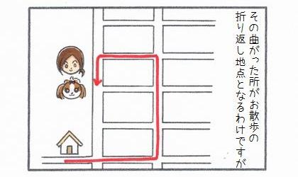 その道路を曲がったところが犬のお散歩の折り返し地点となるわけですが