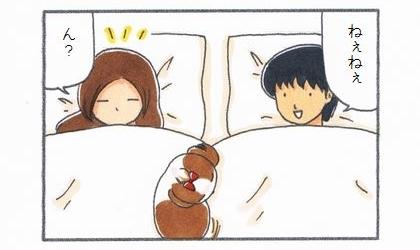 犬と夫と妻と川の字で寝ている