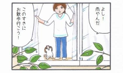 雨の合間にお散歩-1